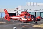 筑波のヘリ撮りさんが、東京ヘリポートで撮影した東京消防庁航空隊 AS365N3 Dauphin 2の航空フォト(写真)