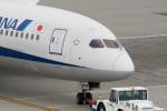 ヤスシさんが、羽田空港で撮影した全日空 787-8 Dreamlinerの航空フォト(写真)