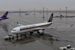 YZR_303さんが、中部国際空港で撮影したシンガポール航空 A330-343Xの航空フォト(写真)