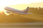 トリトンブルーSHIROさんが、庄内空港で撮影した全日空 A320-211の航空フォト(写真)