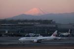 Y-Kenzoさんが、羽田空港で撮影した日本航空 777-246/ERの航空フォト(写真)