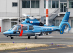 voyagerさんが、東京ヘリポートで撮影した福岡県警察 AS365N3 Dauphin 2の航空フォト(飛行機 写真・画像)