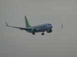 バンチャンさんが、羽田空港で撮影したソラシド エア 737-81Dの航空フォト(写真)