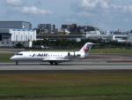 Squallさんが、伊丹空港で撮影したジェイ・エア CL-600-2B19 Regional Jet CRJ-200ERの航空フォト(写真)