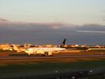 Squallさんが、伊丹空港で撮影した全日空 777-281の航空フォト(写真)