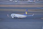 fukucyanさんが、羽田空港で撮影したスカイマーク 737-81Dの航空フォト(写真)