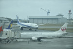 fukucyanさんが、那覇空港で撮影した日本トランスオーシャン航空 737-446の航空フォト(写真)