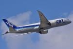 Take51さんが、那覇空港で撮影した全日空 787-8 Dreamlinerの航空フォト(写真)
