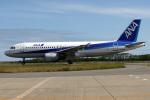 A-Chanさんが、新潟空港で撮影した全日空 A320-211の航空フォト(写真)