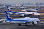HISAHIさんが、羽田空港で撮影した全日空 787-9の航空フォト(写真)