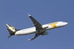とらとらさんが、成田国際空港で撮影したMIATモンゴル航空 737-8SHの航空フォト(写真)