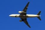 アオアシシギさんが、成田国際空港で撮影したパキスタン国際航空 777-240/ERの航空フォト(写真)