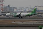 accheyさんが、福岡空港で撮影したシティリンク A320-251Nの航空フォト(写真)
