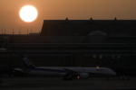 planetさんが、羽田空港で撮影した全日空 787-9の航空フォト(写真)