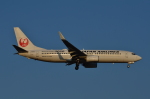 mazdaspeed3さんが、成田国際空港で撮影した日本航空 737-846の航空フォト(写真)