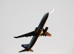 ノビタ君さんが、羽田空港で撮影した全日空 737-881の航空フォト(写真)