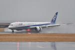 Nikon787さんが、松山空港で撮影した全日空 787-9の航空フォト(写真)