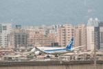 gunmano_kumasanさんが、台北松山空港で撮影した全日空 787-8 Dreamlinerの航空フォト(写真)
