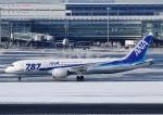 じーく。さんが、羽田空港で撮影した全日空 787-8 Dreamlinerの航空フォト(写真)