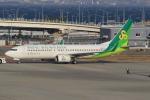 キイロイトリ1005fさんが、関西国際空港で撮影した春秋航空日本 737-86Nの航空フォト(写真)