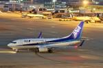 raiden0822さんが、中部国際空港で撮影した全日空 737-781の航空フォト(写真)