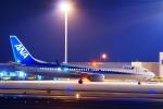 うらしまさんが、高松空港で撮影した全日空 737-881の航空フォト(写真)