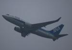 zero1さんが、上海浦東国際空港で撮影した全日空 737-781の航空フォト(写真)