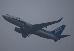 zero1さんが、上海浦東国際空港で撮影した全日空 737-781の航空フォト(飛行機 写真・画像)