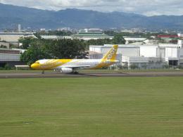 toyokoさんが、マクタン・セブ国際空港で撮影したスクート A320-232の航空フォト(飛行機 写真・画像)