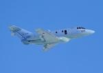 じーく。さんが、茨城空港で撮影した航空自衛隊 U-125A(Hawker 800)の航空フォト(写真)