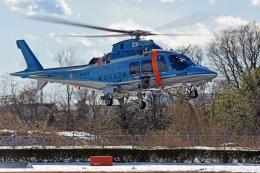 NIKKOREX Fさんが、群馬ヘリポートで撮影した神奈川県警察 AW109SPの航空フォト(飛行機 写真・画像)
