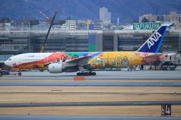 キイロイトリ1005fさんが、伊丹空港で撮影した全日空 777-281/ERの航空フォト(写真)