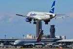 パンダさんが、成田国際空港で撮影したヤクティア・エア 100-95LRの航空フォト(写真)