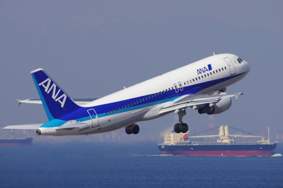 yabyanさんの全日空 Airbus A320 (JA8393) 航空フォト