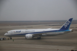 zero1さんが、上海浦東国際空港で撮影した全日空 787-8 Dreamlinerの航空フォト(飛行機 写真・画像)