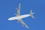 cornicheさんが、ドーハ・ハマド国際空港で撮影したカタールアミリフライト A340-211の航空フォト(写真)