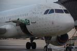 JA8037さんが、レオナルド・ダ・ヴィンチ国際空港で撮影したアリタリア航空 A320-216の航空フォト(写真)