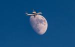 うみBOSEさんが、新千歳空港で撮影したANAウイングス DHC-8-402Q Dash 8の航空フォト(写真)