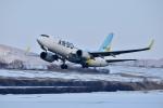 Dojalanaさんが、函館空港で撮影したAIR DO 737-781の航空フォト(写真)