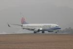 watreeさんが、広島空港で撮影したチャイナエアライン 737-8ALの航空フォト(写真)