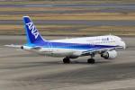 ☆ライダーさんが、羽田空港で撮影した全日空 A320-211の航空フォト(写真)