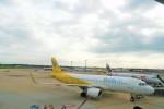DRAGENSさんが、成田国際空港で撮影したバニラエア A320-214の航空フォト(写真)