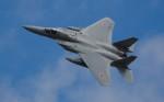 TRdenさんが、三沢飛行場で撮影した航空自衛隊 F-15J Eagleの航空フォト(写真)