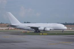 かずまっくすさんが、シンガポール・チャンギ国際空港で撮影したシンガポール航空 A380-841の航空フォト(写真)