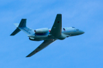 TOM310さんが、新田原基地で撮影した航空自衛隊 U-125A(Hawker 800)の航空フォト(写真)