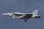Scotchさんが、厚木飛行場で撮影したアメリカ海軍 EA-18G Growlerの航空フォト(写真)