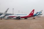 TOM310さんが、上海浦東国際空港で撮影した上海航空 737-86Nの航空フォト(写真)