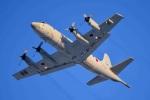 rail_airlineさんが、八戸航空基地で撮影した海上自衛隊 P-3Cの航空フォト(写真)