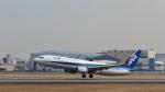 Nez-Nokさんが、伊丹空港で撮影した全日空 737-881の航空フォト(写真)