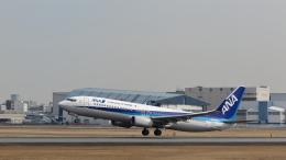 Nez-Nokさんが、伊丹空港で撮影した全日空 737-881の航空フォト(飛行機 写真・画像)